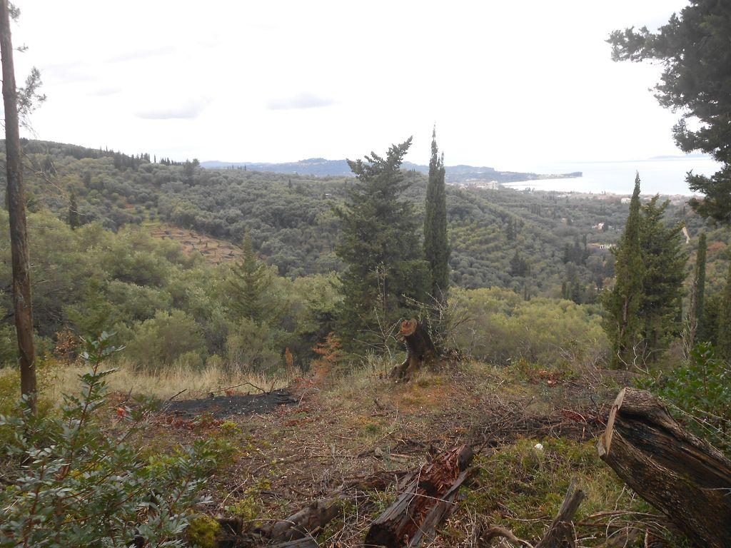 Baugrundstück im Norden Korfu